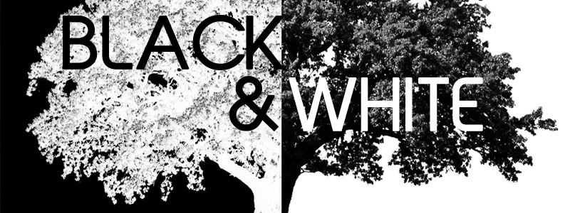 2nd Annual Black & White - Call for Artists!