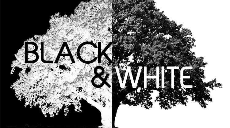 Black & White, an art show