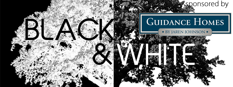 The 5th Annual Black & White Art Exhibit at the Hallberg Center for the Arts