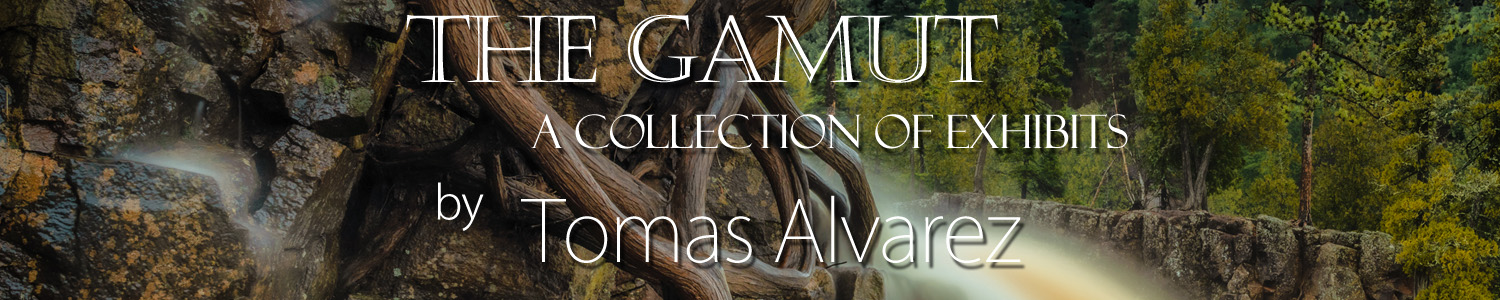 The Gamut:  A Collection of Exhibits by Tomas Alvarez